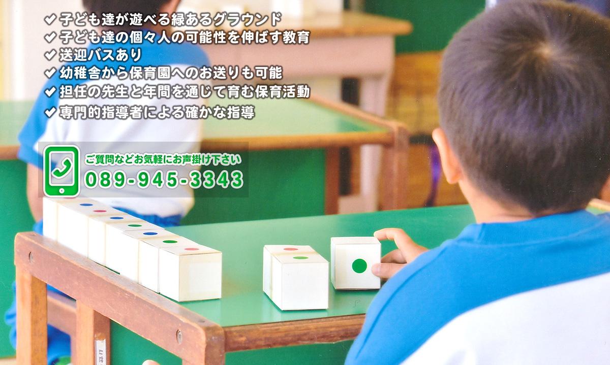 二神塾幼稚舎 舎外での活動で多くの経験を